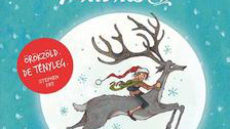 Valami jó | Matt Haig: A fiú, akit Karácsonynak hívtak