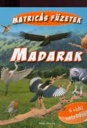 Madarak-800x800